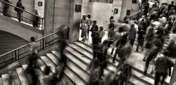 España es el décimo país de la OCDE con mayor peso de las cotizaciones sociales - La Viña